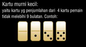 Panduan Cara Mudah Bermain Judi Domino Online