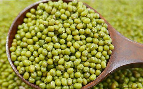 Manfaat Kacang Hijau untuk Kesehatan Kita