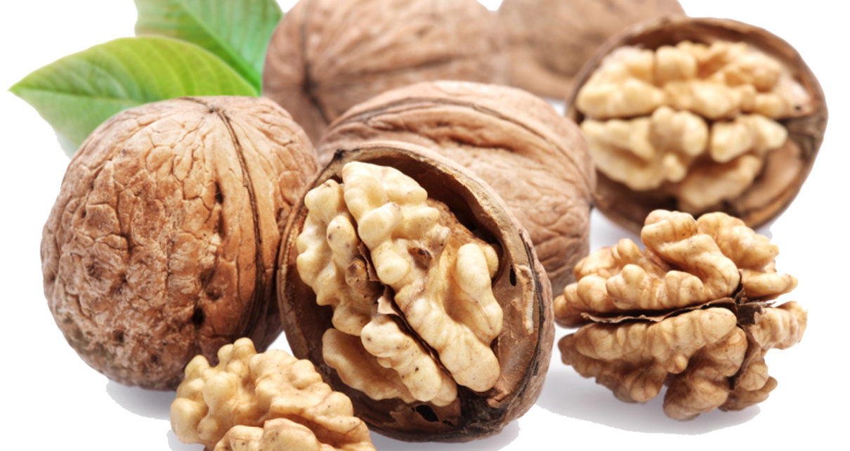Walnut si Kacang Imut dengan Segudang