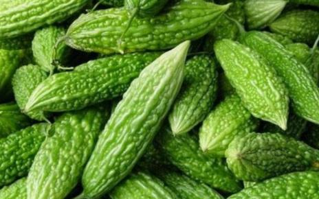 Manfaat Kesehatan Dari Jenis Sayuran Rasa Pahit Seperti Sayur Pare