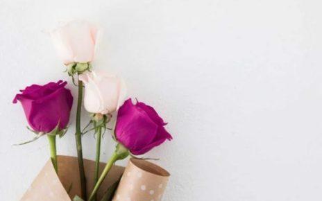 Manfaat Bunga Mawar untuk Kesehatan, Kecantikan