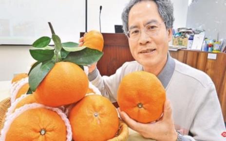 buah terbesar di dunia ini bikin heboh dan termasuk fenomena