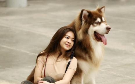 Beberapa Dog Lover Tercantik & Imuet Indonesia